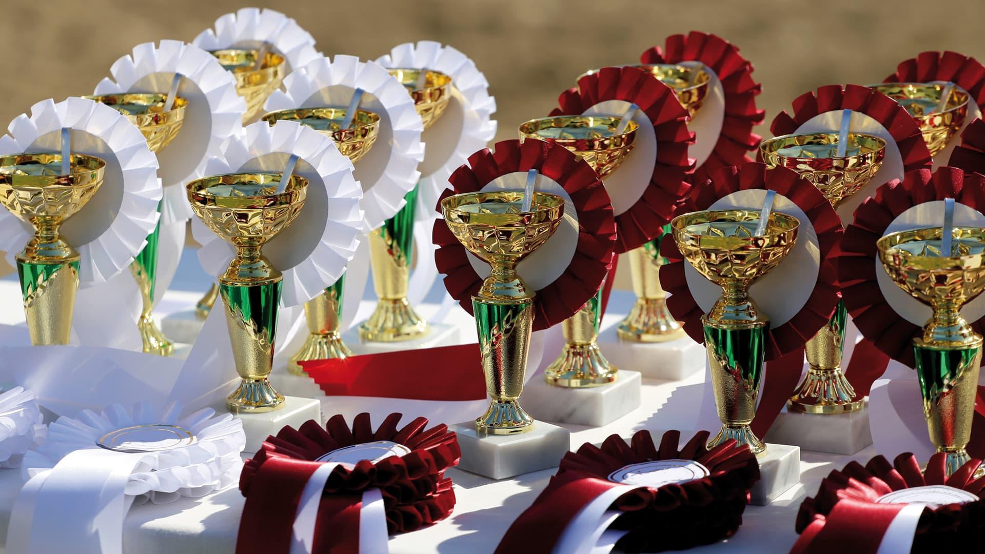 Pokale und Siegerschleifen